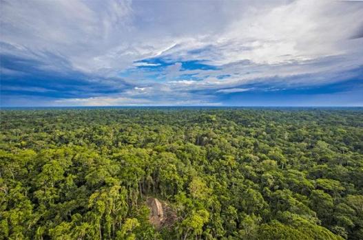 BREZİLYALI FOTOĞRAFÇININ TESADÜFEN GÖRDÜĞÜ AMAZON KABİLESİ