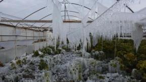İzmir'de Kar Şaşkınlığı!