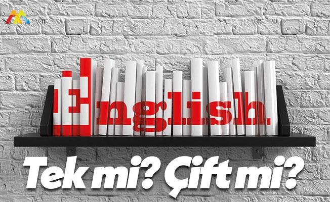 Tek Bir Yabancı Dil mi? Orta Derece 2 Dil mi?