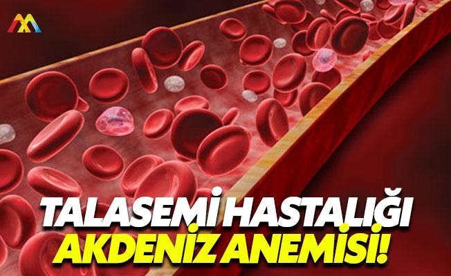 Talasemi hastalığı ülkemizde sık görülüyor