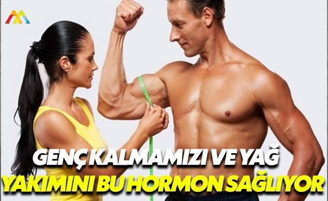 Sağlığımızı koruyan hormonlar: HGH