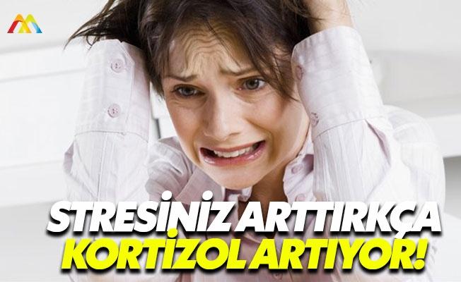 Sağlığımızı koruyan hormonlar: Kortizol