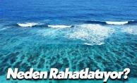 Deniz İnsanı Neden Rahatlatır?